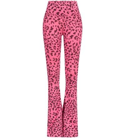 Animal Pants - A comfy sense of style