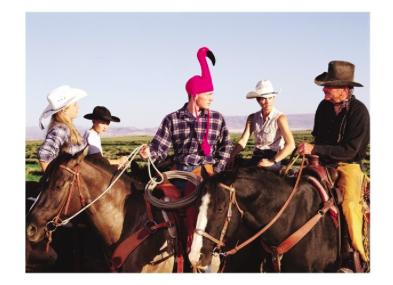Flamingo Cowboy