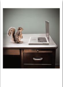 Squirrel Laptop