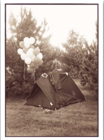 Tent Balloons - Palm Press