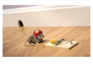 Mouse & Helmet - Palm Press