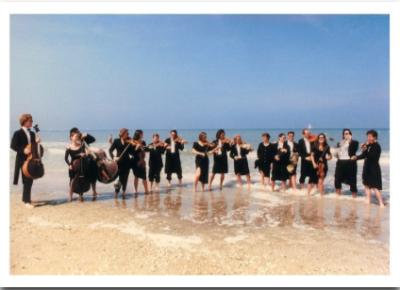 Beach Ochestra - Palm Press