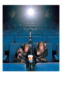Chimps in Theater - Palm Press