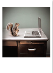 Squirrel Laptop - Palm Press