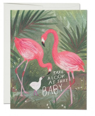 Flamingo Baby Card - Red Cap Cards
