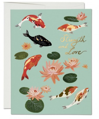 Koi Fish - Red Cap Cards