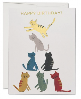 Gold Kitty Card - Red Cap Cards