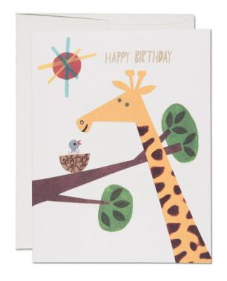Giraffe Birthday - Red Cap Cards