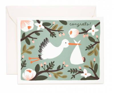 Congrats Stork - Grußkarte