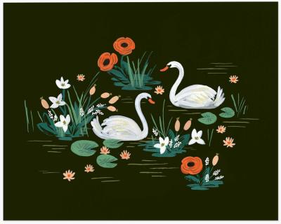 Swan Art Print - Kunstdruck