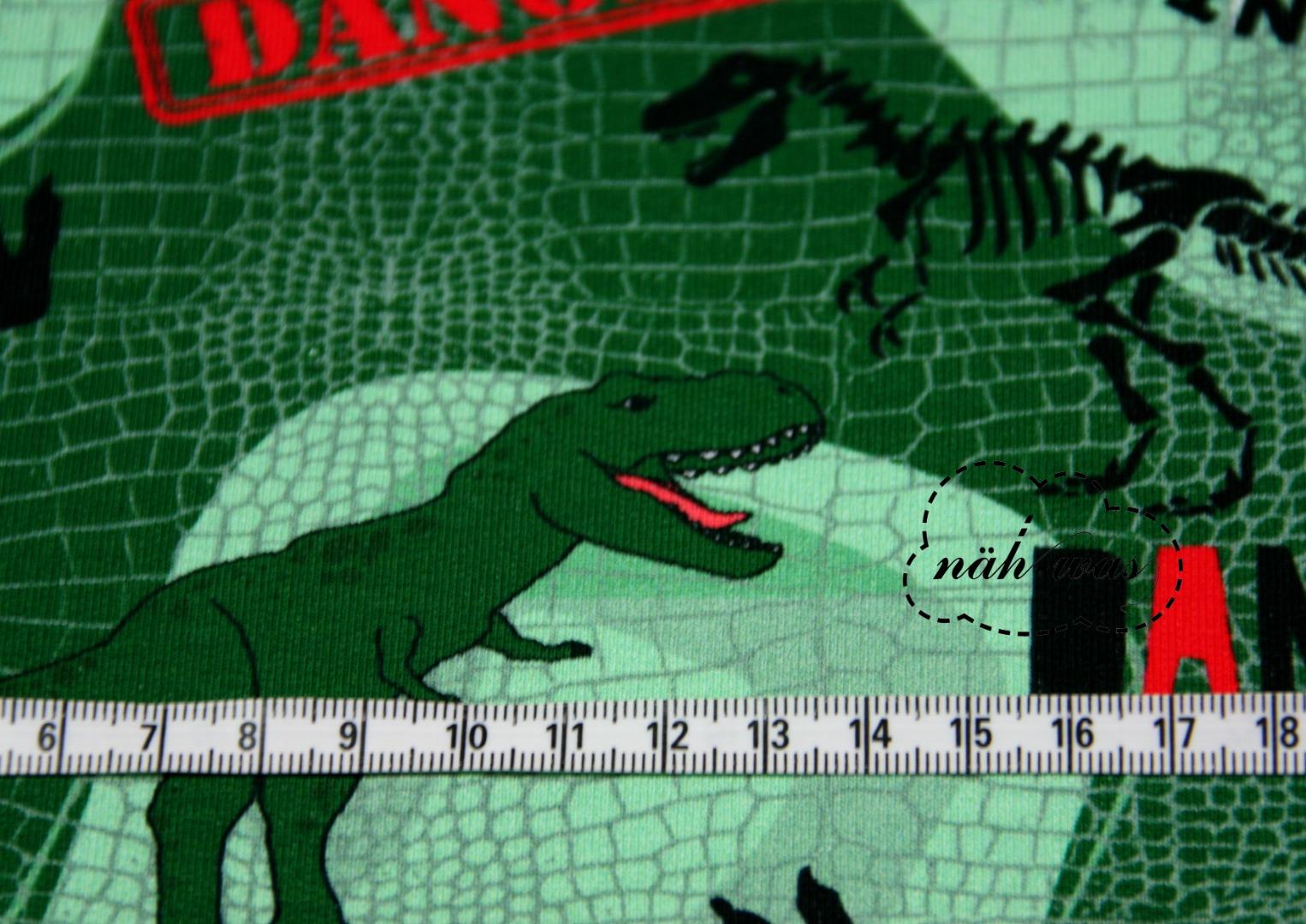 Dino French Terry Tyrannosaurus Rex