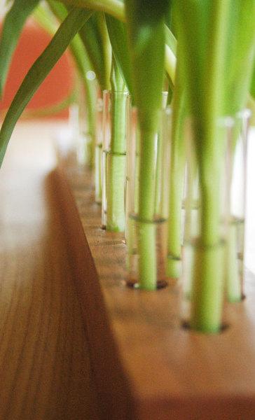 Vase aus Kirschbaum 3 - 3