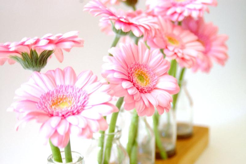 Blumenvase - Milchkanne 5 4