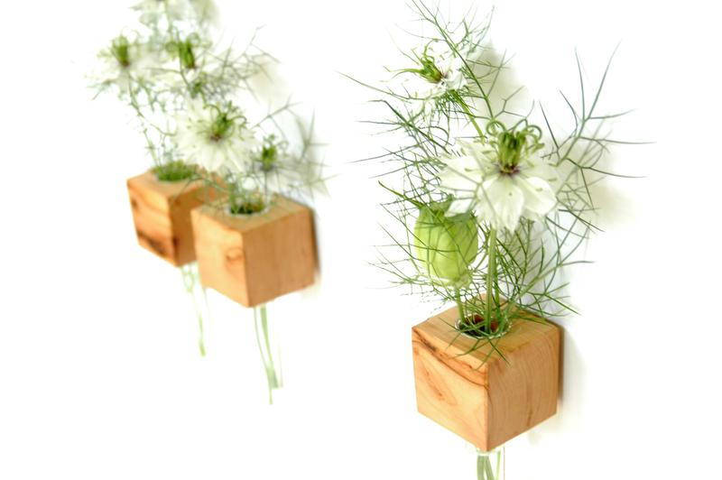 3 Kühlschrankmagnet - Apfelholz