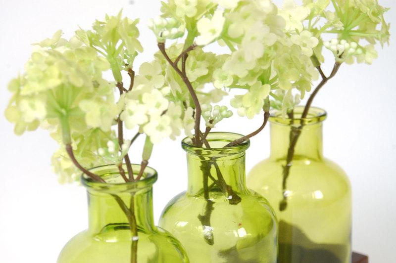 2 Milchkanne aus Nuss grün Vase