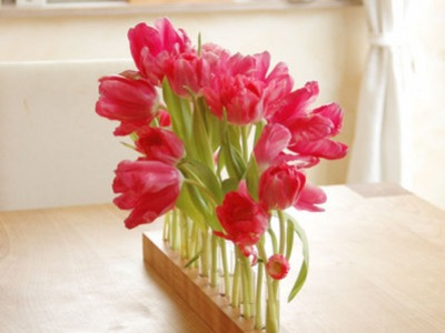 Vase mit Reagenzglaesern Blumenwiese in Kirsche