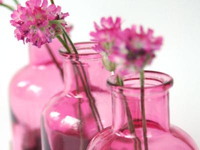 2 Milchkanne aus Nuss rosa, Blumenvase, Vase