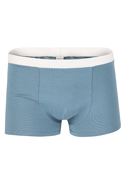 Bio Trunk Shorts Retro Shorts hellgrau - 1