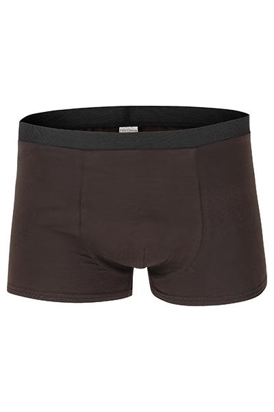 Bio Trunk Shorts Retro Shorts braun - 1