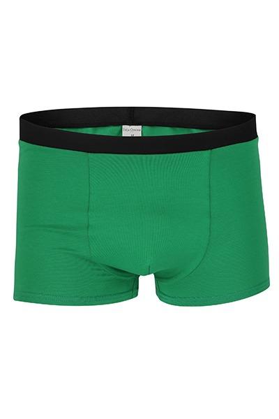 Organic men s trunk boxer shorts green