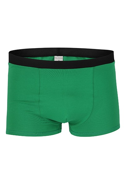 Organic men s trunk boxer shorts green