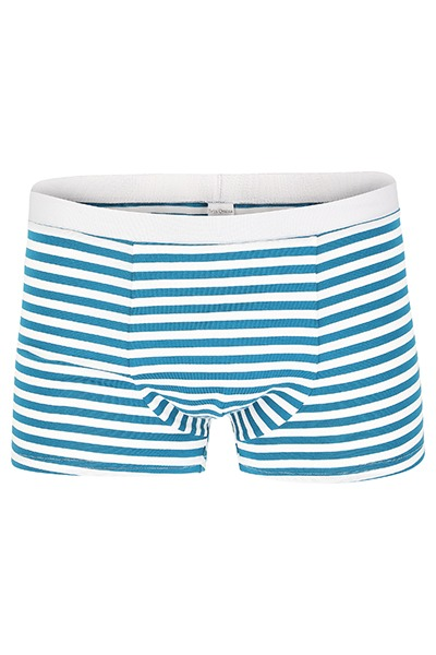 Organic men s trunk boxer shorts stripes