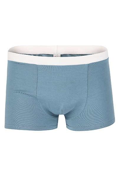 Bio Trunk Shorts / Retro Shorts hellgrau