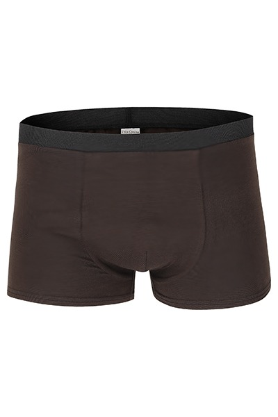 Organic men s trunk boxer shorts brown