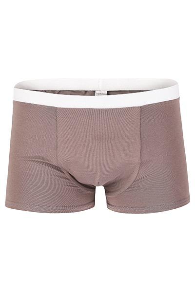 Bio Trunk Shorts / Retro Shorts graubraun