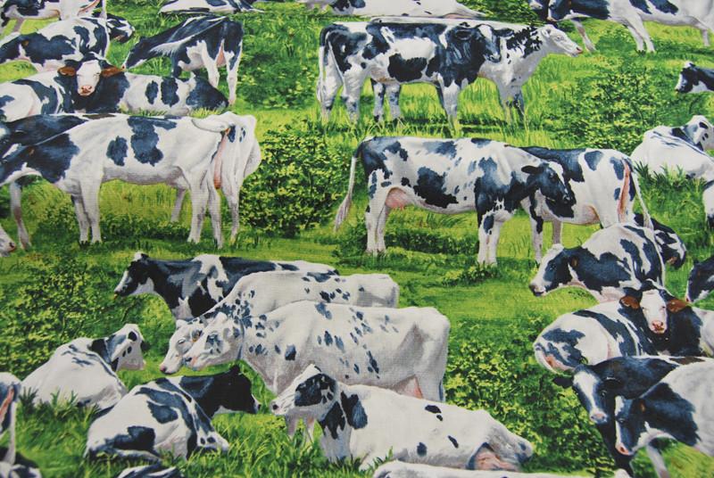 Kühe - Baumwolle von David Textiles 0,5 m - 4
