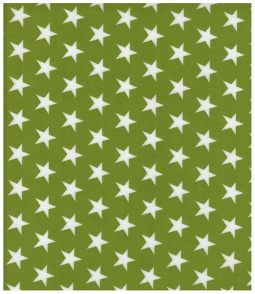Beschichtete Baumwolle Sterne auf Grün 140cm