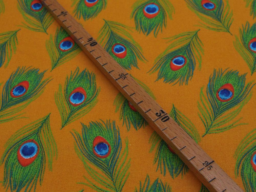 Beschichtete Baumwolle - Pfauenfedern groß -