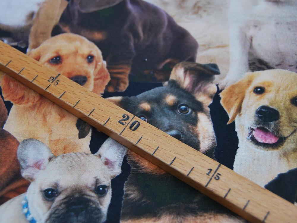 Baumwolle - Hunde - Digitaldruck