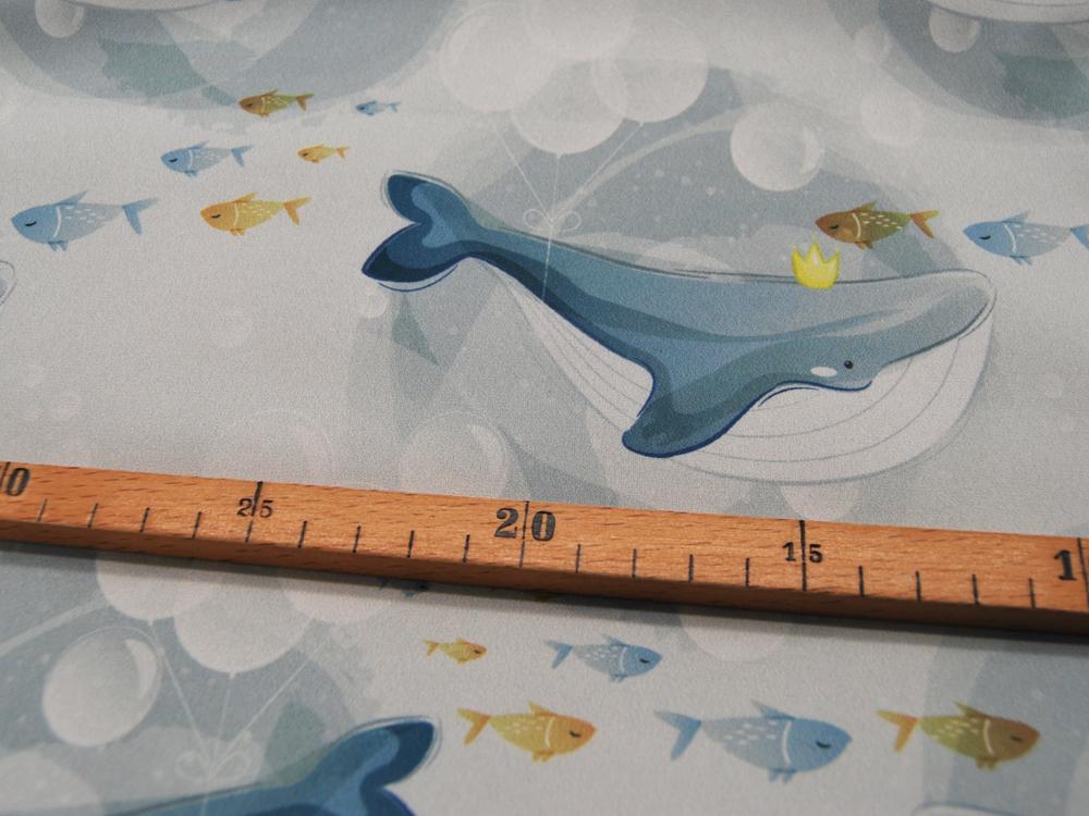 Softshell - Wale - auf Blaugrau