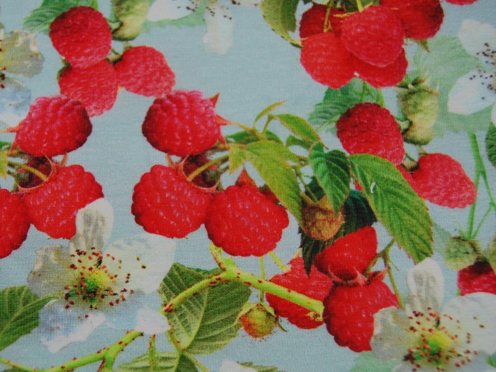 Jersey - Raspberries - Himbeeren -