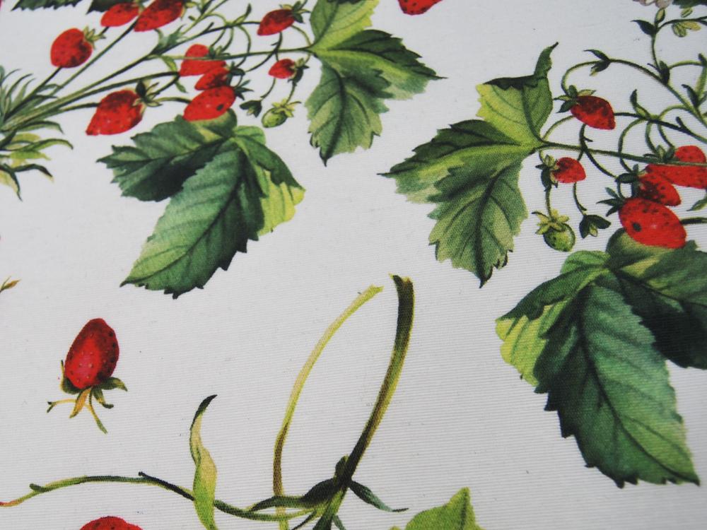Beschichtete Baumwolle Erdbeeren auf Weiß Meter
