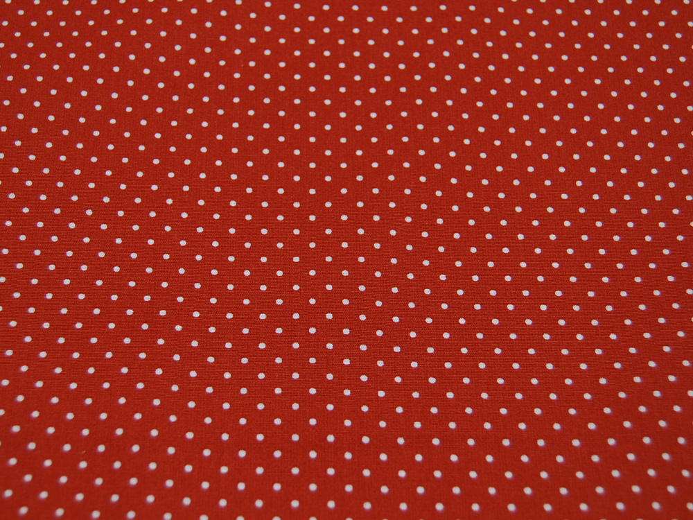 Petit Dots auf Terracotta- Baumwolle 05