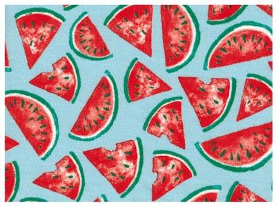 Beschichtete Baumwolle - Wassermelone 50 x75