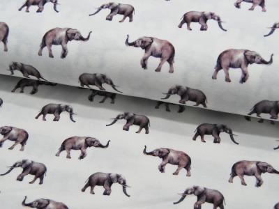 Jersey Elefanten auf Creme Digitaldruck Meter