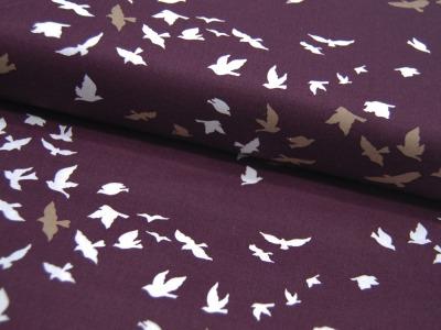 Baumwolle Aves Chatter Dim Vögel auf
