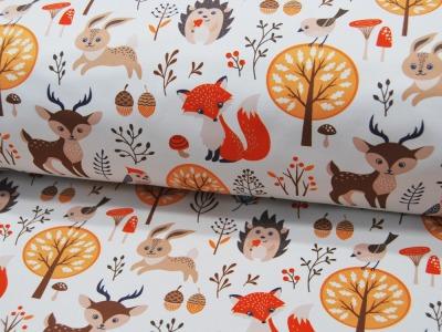 Softshell Fiete Waldtiere auf Weiß Meter