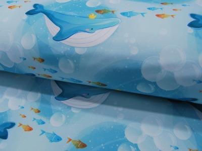Softshell - Wale - auf Blau