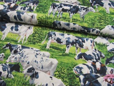 Kühe - Baumwolle von David Textiles 0,5 m