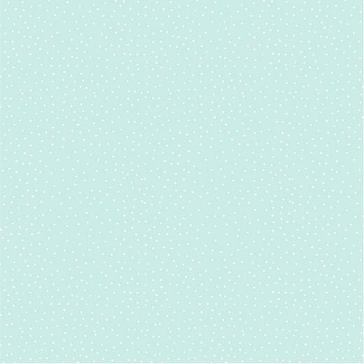 05m BW Dots Punkte mint weiß