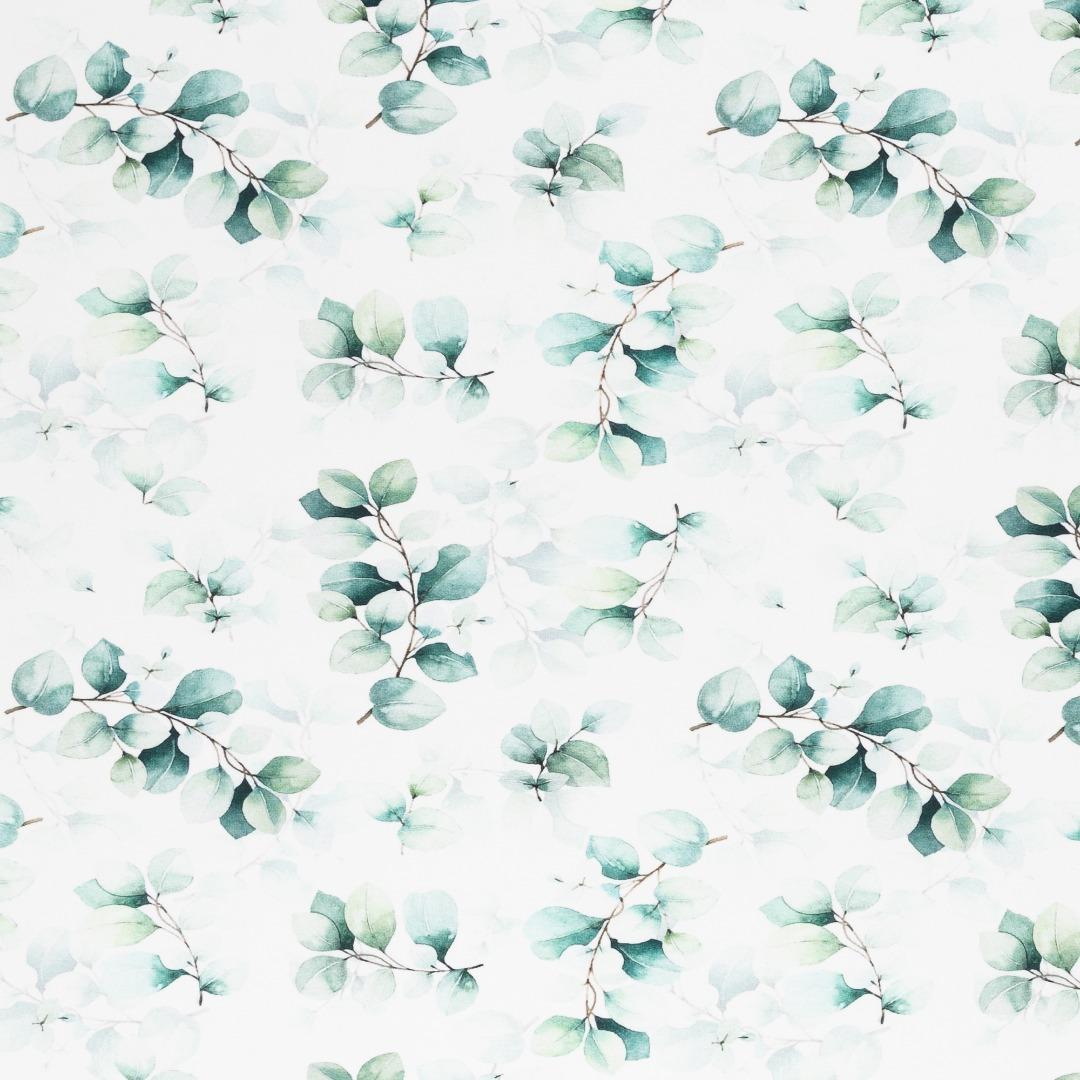 05m Jersey Eukalyptus weiß grün 2