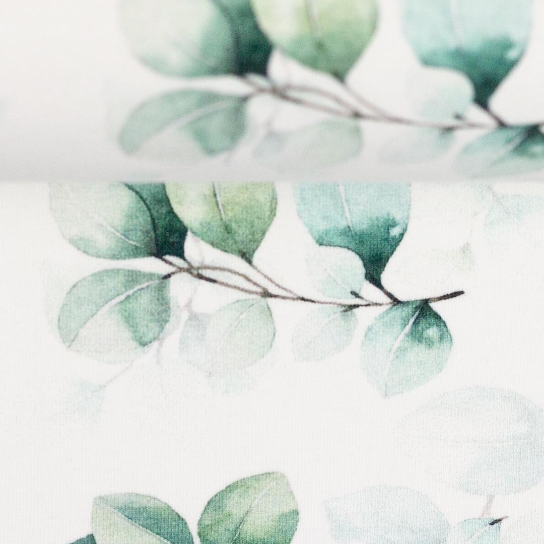 05m Jersey Eukalyptus weiß grün 3