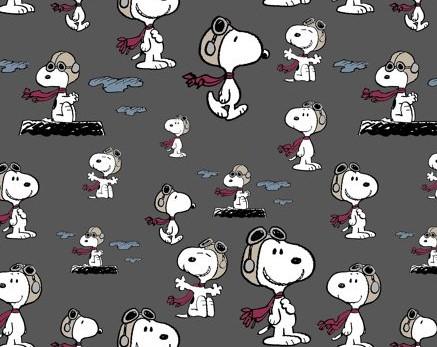 05m Jersey Reprint Snoopy Pilot grau