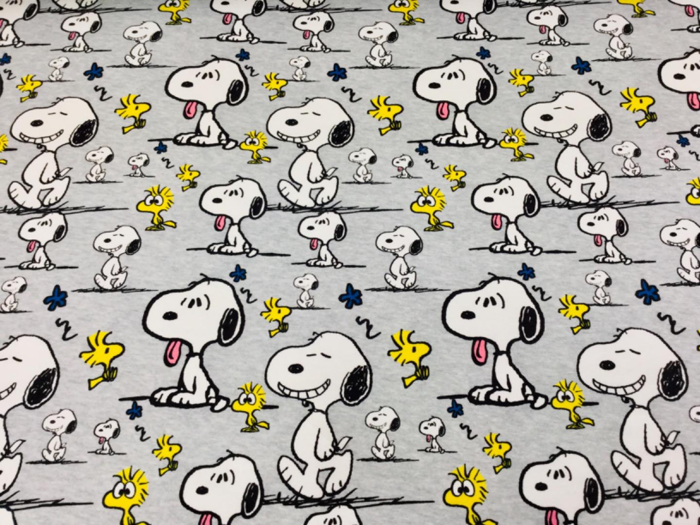 05m Jersey Snoopy Faces Peanuts hellgrau