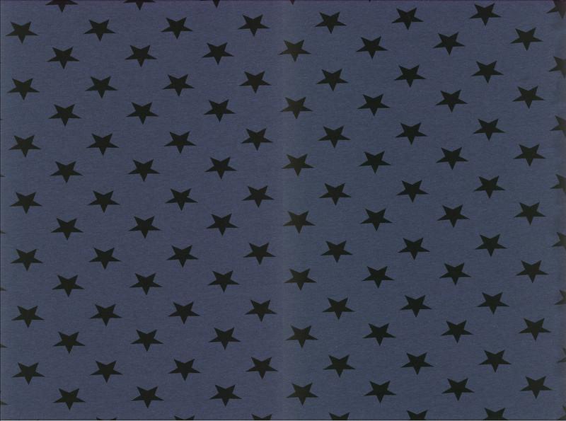 05m Jersey Kito Sterne meliert grün - 4