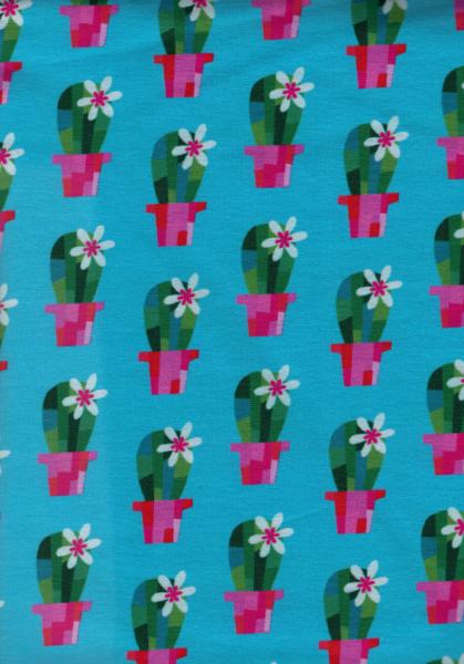 0 5m Sweat Kaktus in Topf tuerkis Cactus Blossom